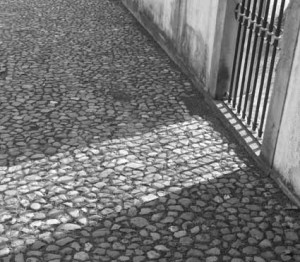 Shadow Coimbra 778 c